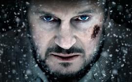 The Grey Liam Neeson 1.jpg
